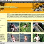 Beach Hunters Energo Account 2016