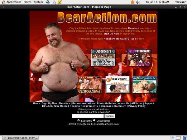 Bear Action Porn Pass