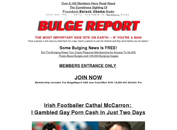 The Bulge Report Promo Deal