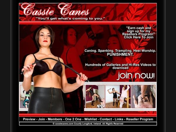 Free Cassie Canes Login