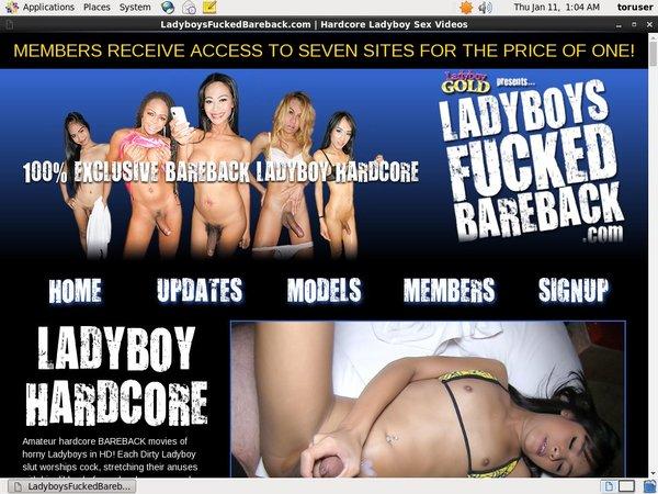 Ladyboys Fucked Bareback Epoch